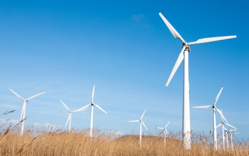 Alberta: des travailleurs se tournent vers l'éolien