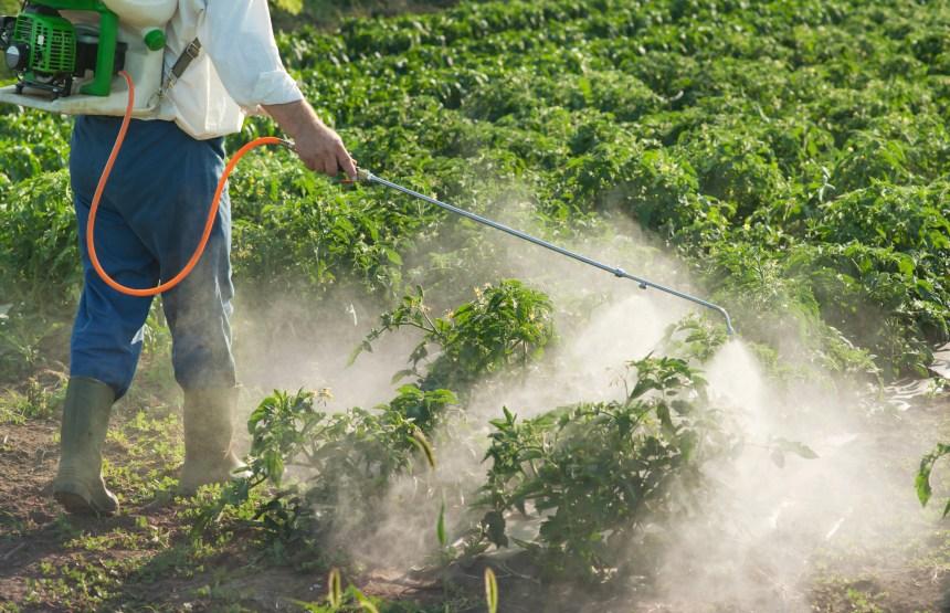 Usage des pesticides: une commission parlementaire devrait décider jeudi