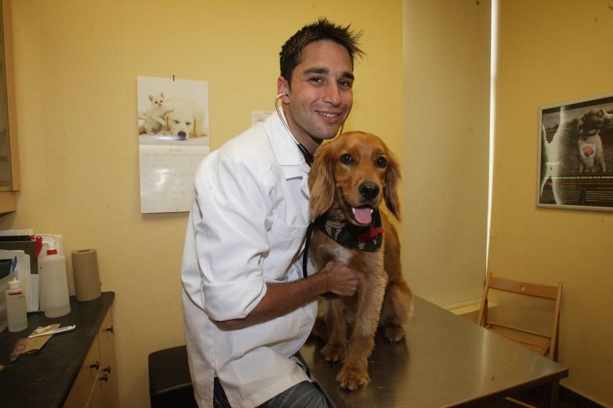 Médecine vétérinaire, une profession qui ouvre des portes