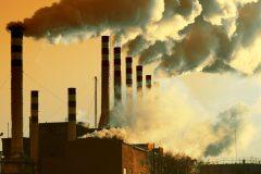 La pollution, nouvelle cause de la chute des cheveux?