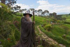 Le seul et unique Gandalf