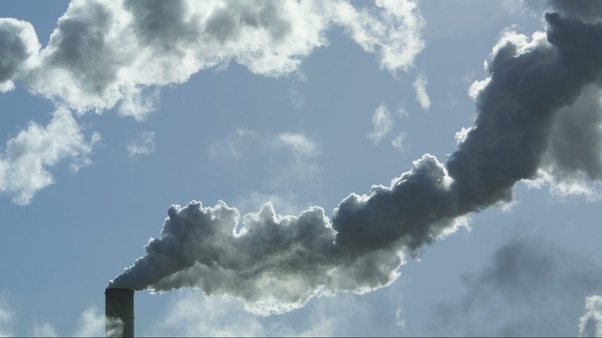 Taxation du carbone: l'efficacité des politiques remise en question
