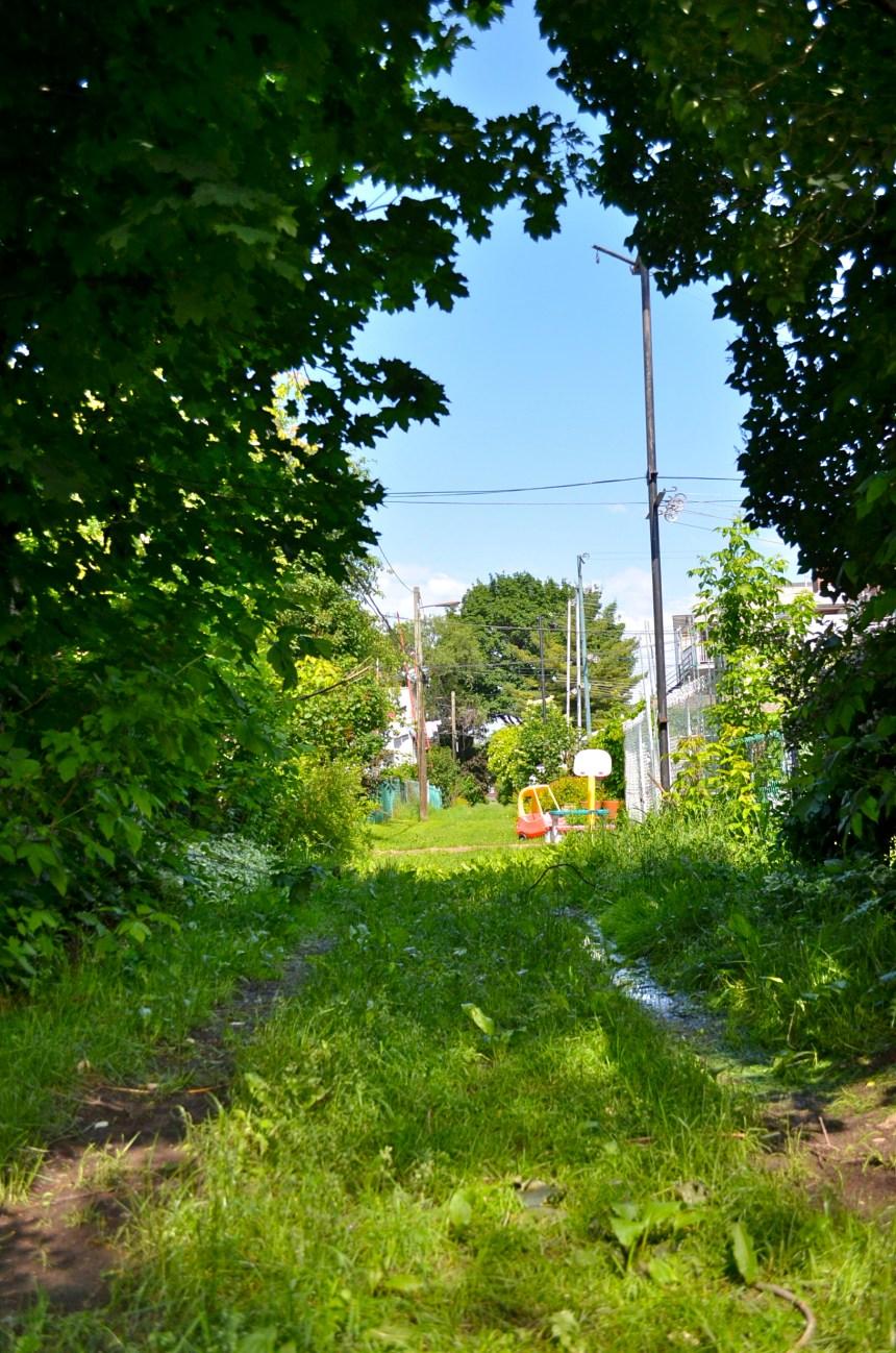 Les ruelles vertes fleurissent à Montréal