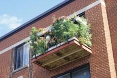 Balcons verts pour aider l'écosystème