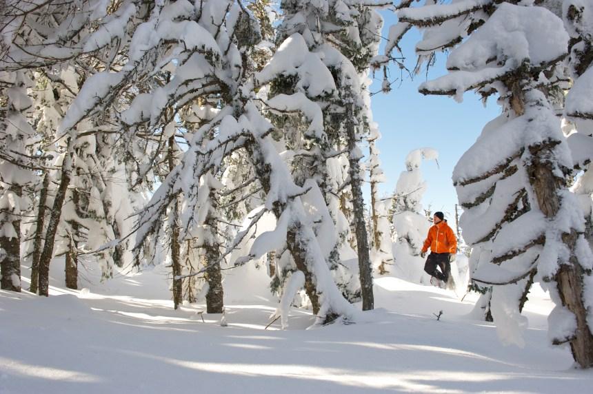 Raquette et ski de fond au Québec: 3 sites coups de cœur dans 3 régions!