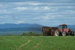 Libre-échange: les producteurs agricoles risquent d'être déçus par le budget