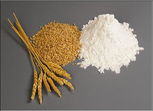 Une protéine naturelle pour traiter l'intolérance au gluten