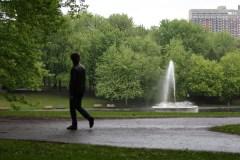 Parc La Fontaine: «Il faut peser sur le gaz», dit Luc Ferrandez
