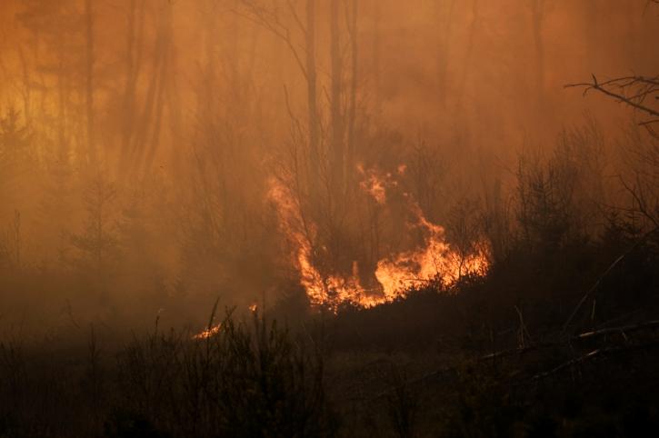 Des feux de forêts en Alberta forcent l'évacuation de résidents