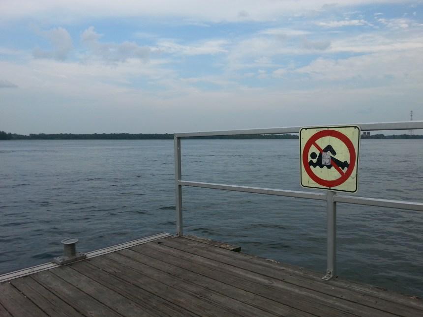 Promenade Bellerive: la baignade n'est pas illégale
