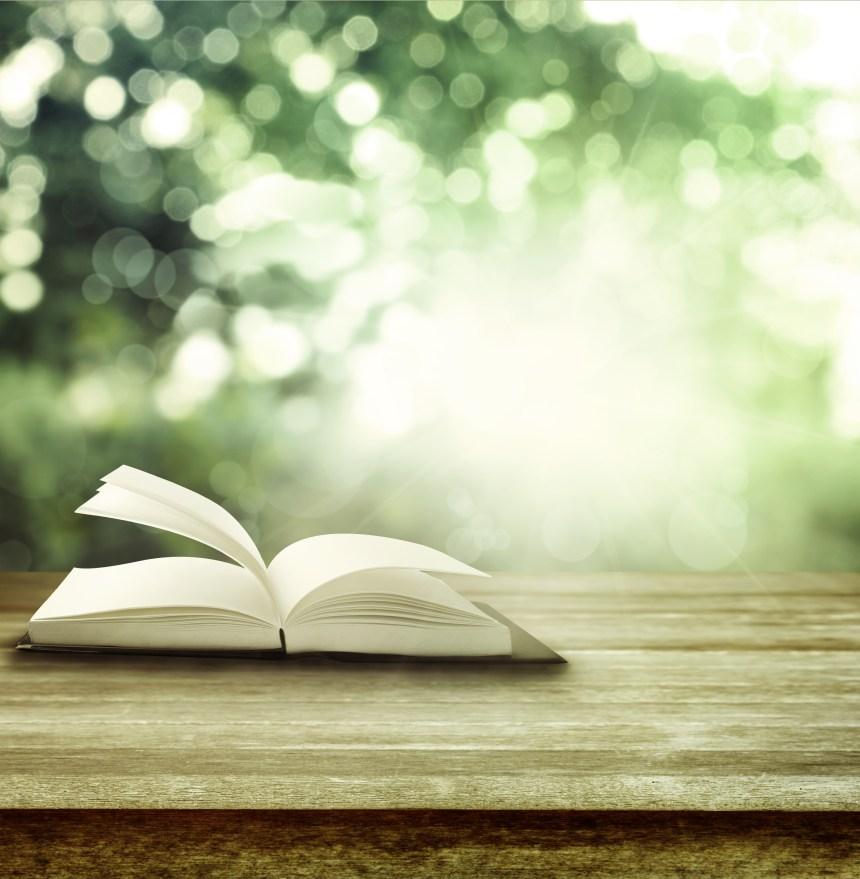 Six livres pour célébrer les auteurs d'ici le 12 août