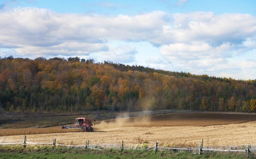 Pénurie de main-d'oeuvre agricole: pertes de 53 M$