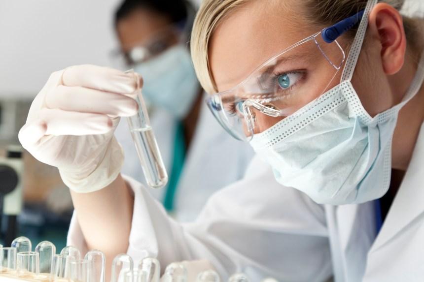 Les papillomavirus humains, transmissibles par le sang?