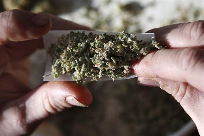 Ottawa devrait pardonner la possession de cannabis, dit l'Institut C.D. Howe