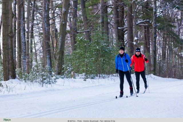 Ski de fond au parc national d'Oka - Crédit photo Dominic Boudreault