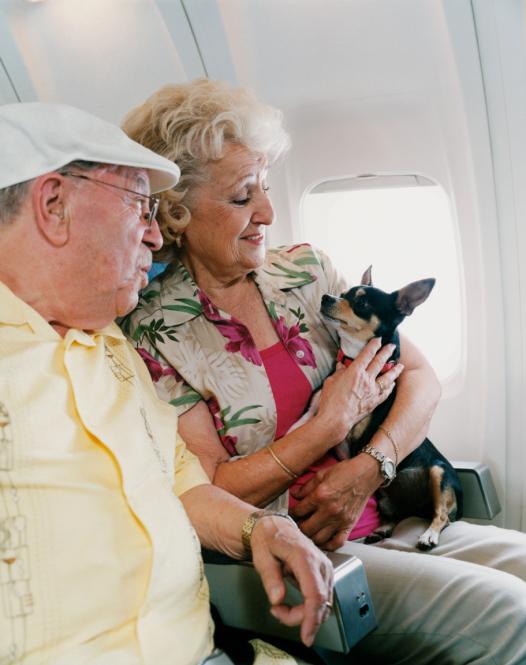 Une vaste étude pour aider à mieux vieillir