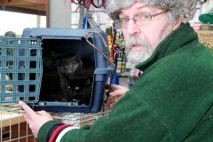 Il rêve d'un refuge pour animaux à Montréal-Nord