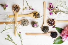 Mieux connaître la naturopathie