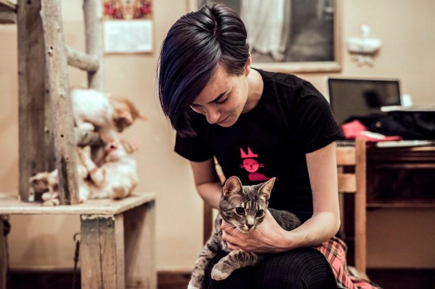Sophy sauveuse de chats