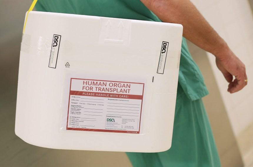 Hausse du don d'organes au Québec