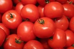 Ma tomate, je la mange sans pesticides