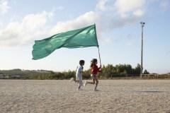 Le mât et le drapeau