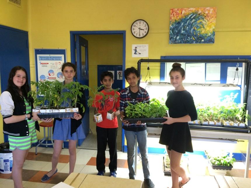 Des écoliers jardiniers à l'école Sainte-Cécile