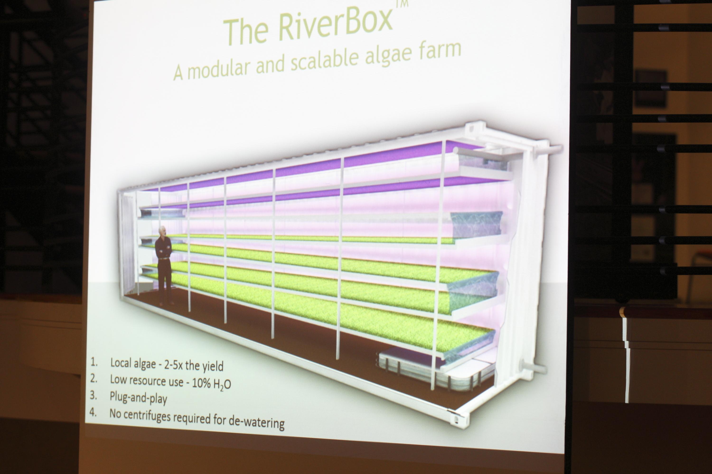 Algues river box