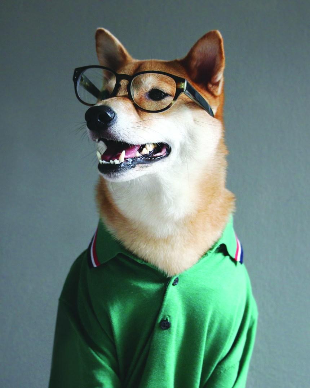 Un style qui a du chien