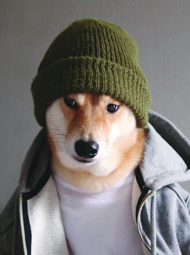 mensweardog_04knit_beanie