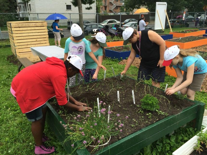 Jardinage 101 pour des élèves d'Armand-Lavergne et Philippe-Labarre