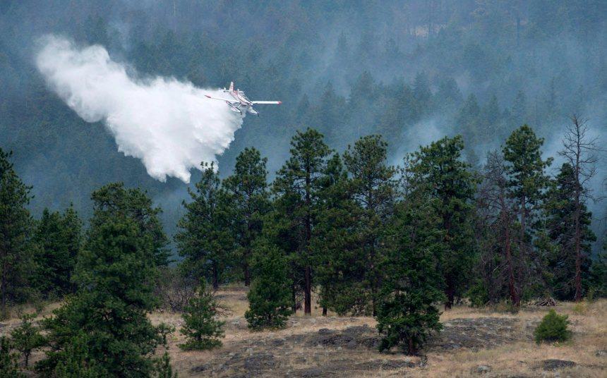 Colombie-Britannique : la foudre a allumé 60 des 67 incendies