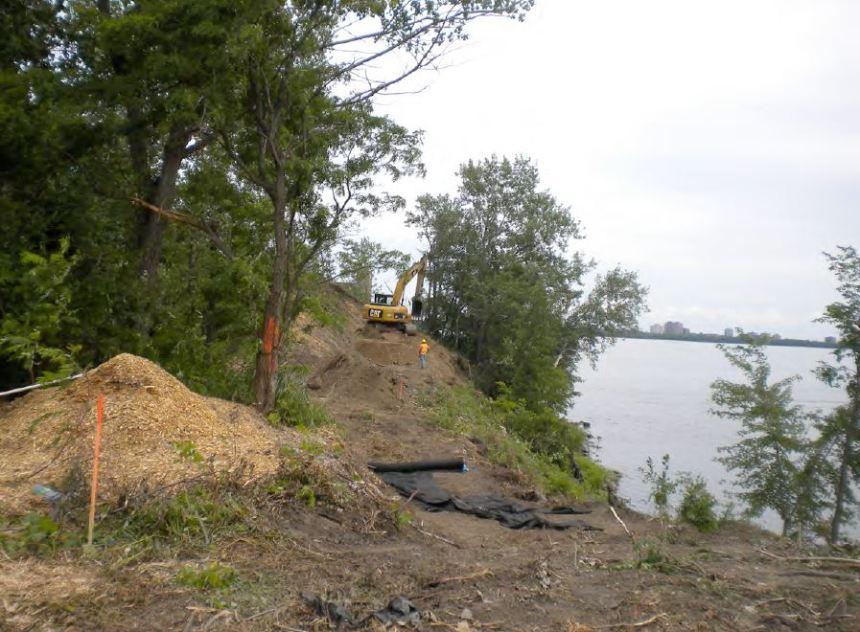 Estacade du pont Champlain: Déboisement illégal?