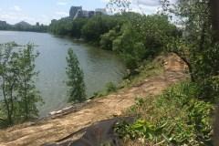 Travaux à l'Estacade: Une étude environnementale ignorée