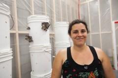 Agriculture urbaine, des champignons signés Hochelaga