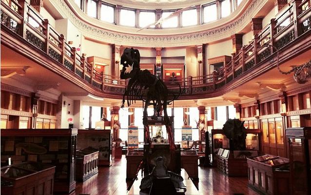 10 musées que vous ne connaissez pas (ou peu) à Montréal