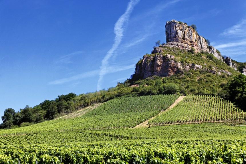 Les climats en Bourgogne inscrits à l'Unesco: pourquoi est-ce une bonne nouvelle?