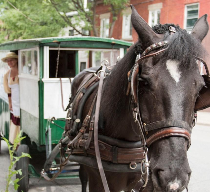 Défilé de voitures tirées par des chevaux dans Pointe-Saint-Charles