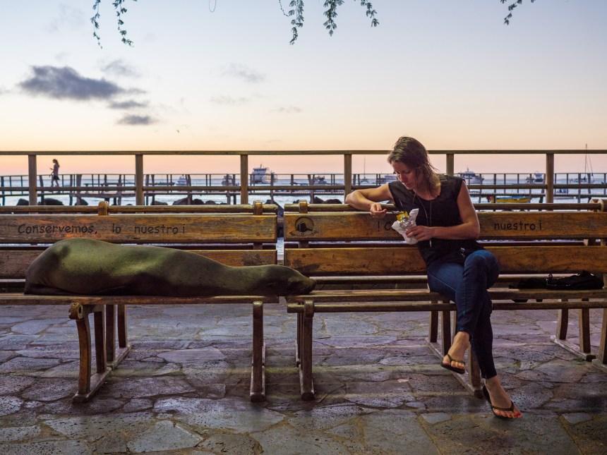 Les Galapagos: incroyables, mais à quel prix?