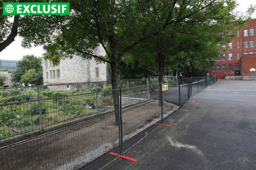 Un jardin communautaire voisin d'un terrain contaminé
