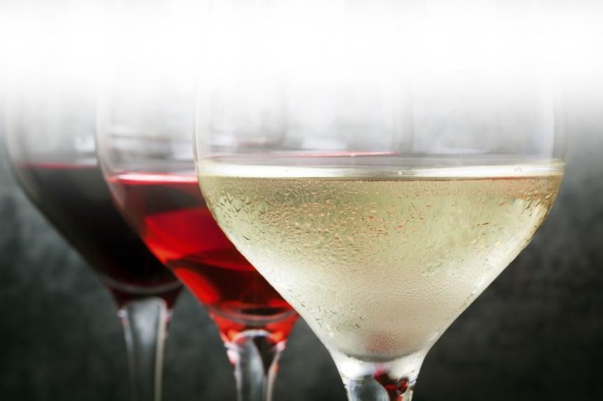 Cours de vin: faire connaissance avec le vin