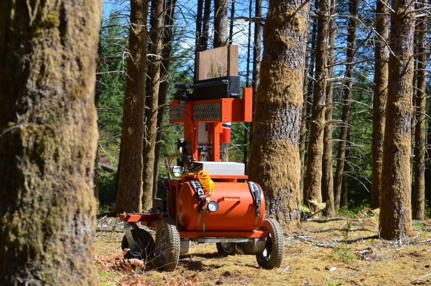 Le robot qui plantait des arbres