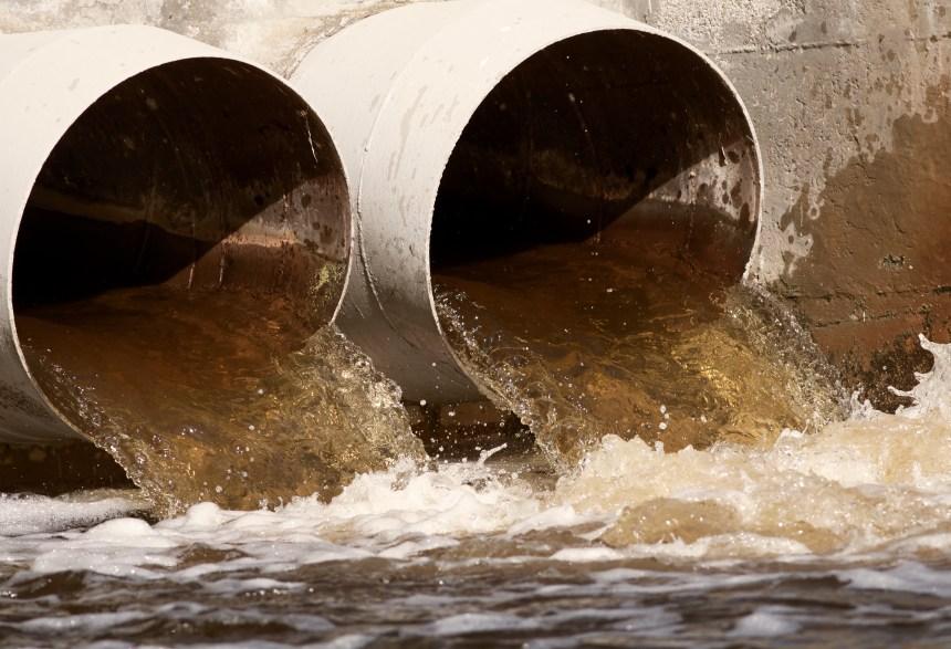 Ottawa mandate trois scientifiques pour étudier le déversement des eaux usées