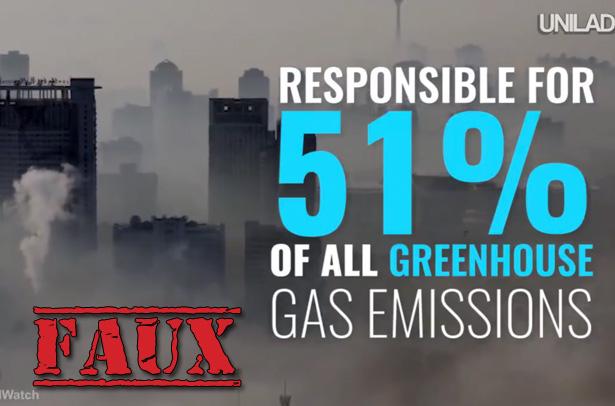 Non, l'élevage de bétail n'est pas responsable de 51% des émissions de gaz à effet de serre
