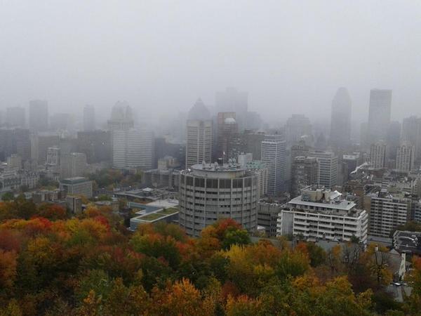 Photos: Première neige à Montréal