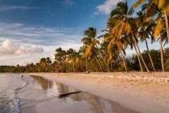 3 belles plages de la Martinique