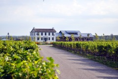 Cinq vignobles à voir sur la Route des vins de la péninsule du Niagara