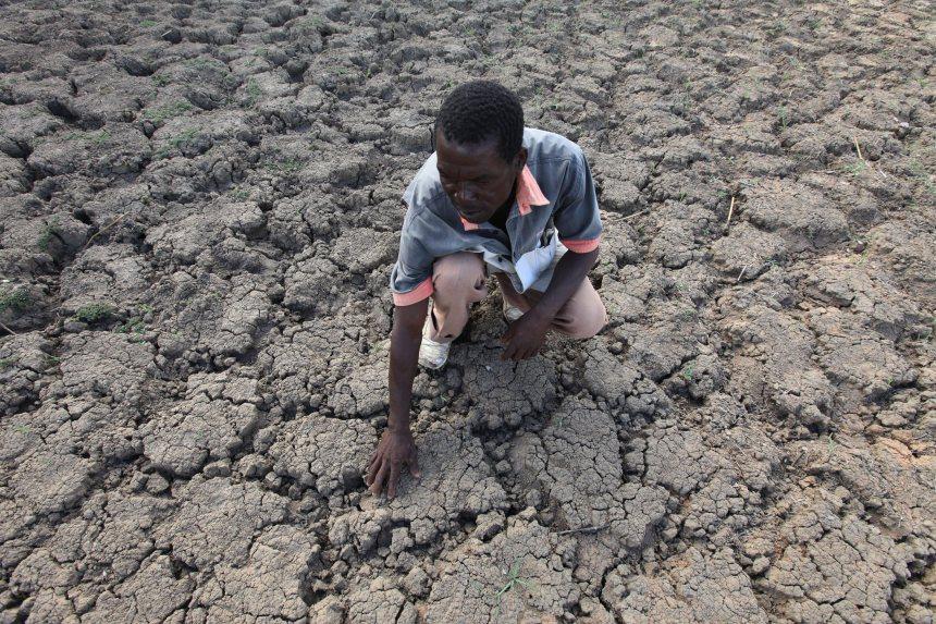 Deux fois plus de sécheresses l'an dernier, selon l'ONU