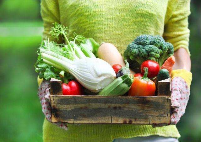 Manger des fruits et légumes à l'adolescence réduirait le risque de cancer du sein de 24%
