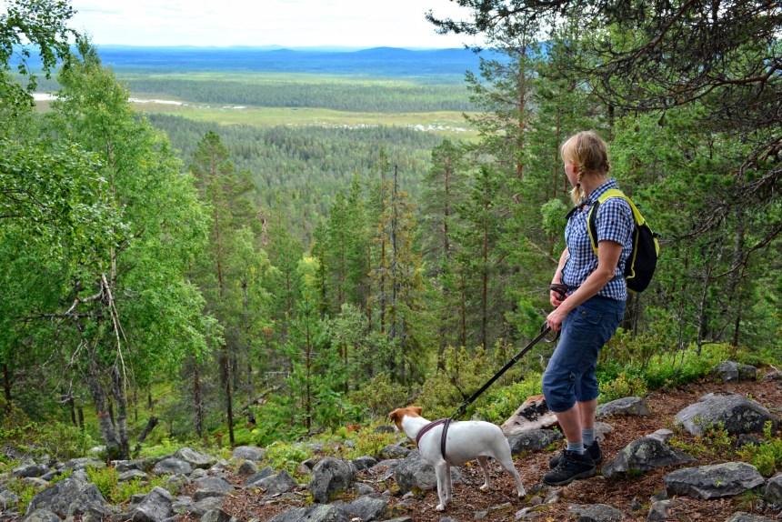 Un projet pilote pour autoriser les chiens dans trois parcs nationaux du Québec